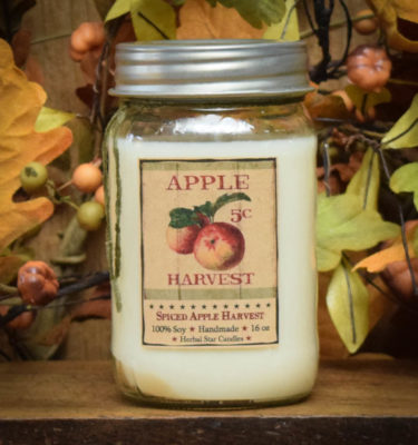 spiced apple harvest 16 oz jar