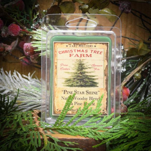 Pine Star Shine Mini Pack of 6 Tarts