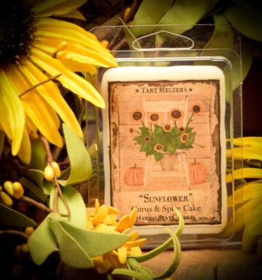 Sunflower Mini Pack of 6 Tarts