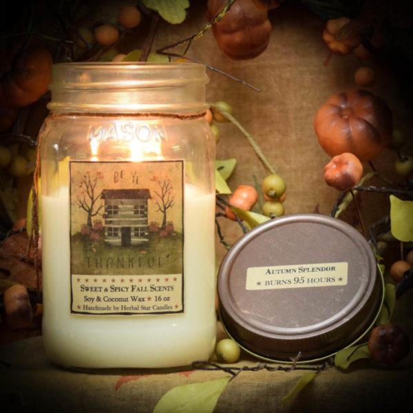 Autumn Splendor 16 oz Jar candle burning