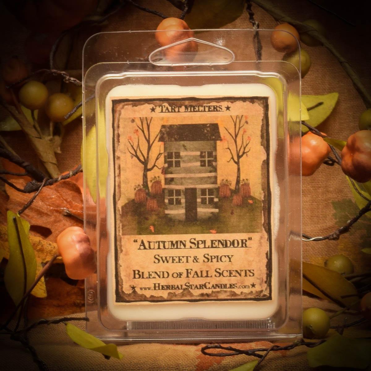 Autumn Splendor Mini Pack of 6 Tarts