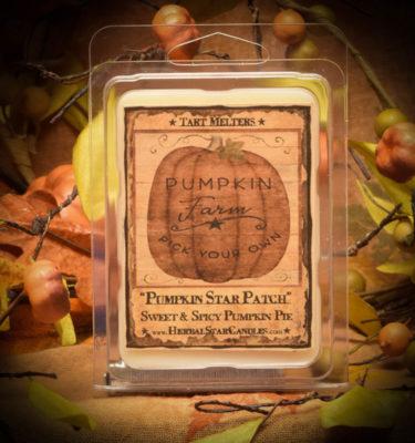 Pumpkin Star Patch Mini Pack of 6 Tarts