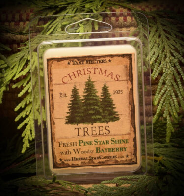 Pine Star Shine with Woodsy Bayberry Mini Pack of 6 Tarts